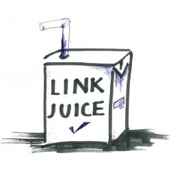 O que é referência do domínio para link juice